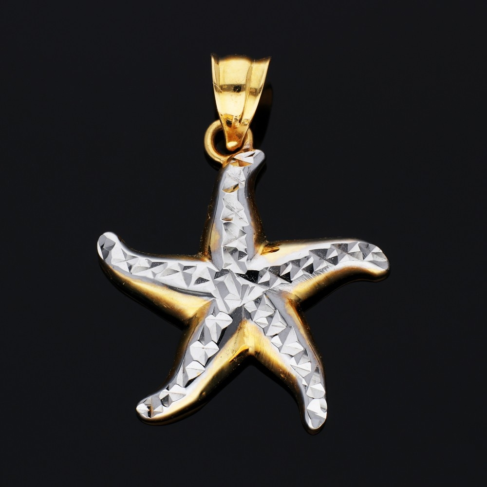 Medalion aur 14K galben si alb steluta